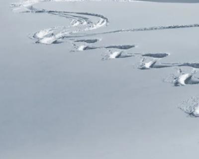 На этой неделе в центральной России выпадет снег