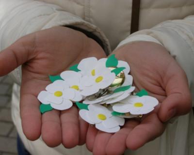 В Крыму проведут благотворительную акцию «Белый цветок»