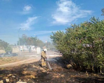 На Шабалина в Севастополе загорелись трава и кустарник