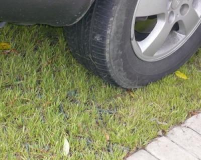В Севастополе начали штрафовать за парковку на газонах