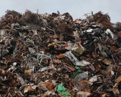 В Севастополе выявили незаконную свалку мусора