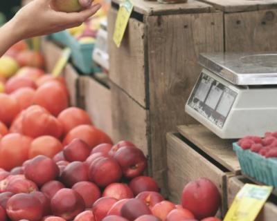 Урожай фруктов в этом году будет меньше прошлогоднего