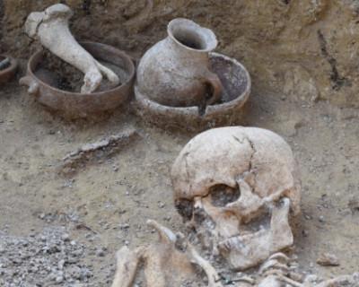 Генетики определят геном людей и животных, которые жили две тысячи лет назад в Крыму