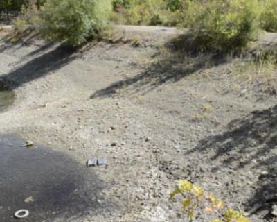 В Киеве открыто злорадствуют засухе в Крыму и смакуют тему обезвоживания местных водоемов