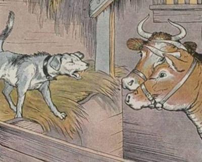 Чаловские «собаки» на сене городища