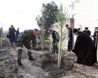 Начальник полиции Севастополя принял участие в высадке деревьев на площади Восставших