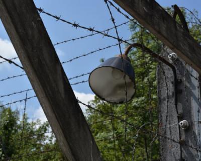 В Крыму рассекретили материалы о  местах расстрелов и захоронений мирных граждан в годы фашистской оккупации полуострова