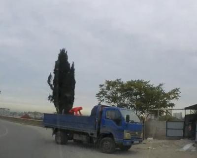 В Севастополе обнаружили очередную свалку строительного мусора