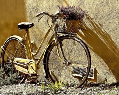 В Крыму в ДТП погиб велосипедист