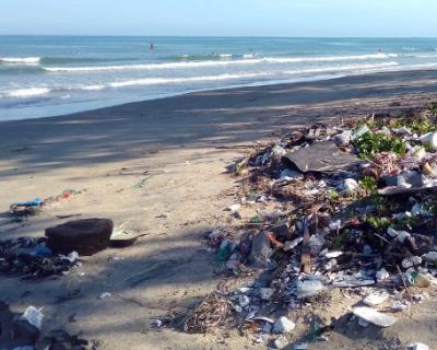 Активисты российского отделения Greenpeace собрали 108 кг мусора в Черном море