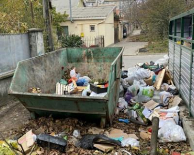 Глава Симферополя попросила граждан сообщать ей о свалках мусора