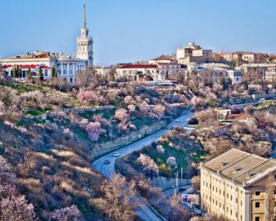 Севастопольский март или миндалём по бездорожью (фото)