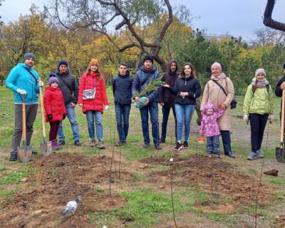 Тысячи деревьев вместо тонн мусора – результат экопроекта «Севастопольских мам»