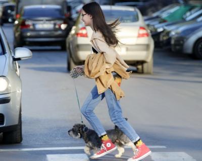 В Севастополе стартует онлайн-олимпиада для школьников на знание основ безопасного поведения на дорогах