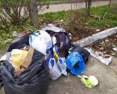 В Севастополе вместо НТО появляются свалки мусора