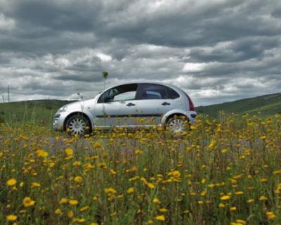 В Севастополе продолжаются рейды по выявлению парковки автомобилей на газонах