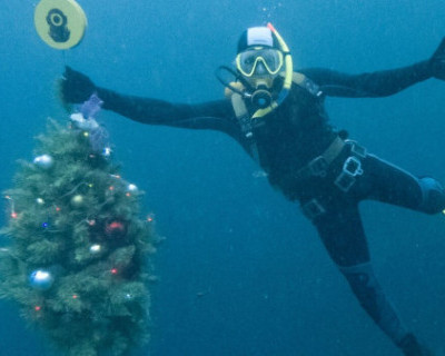 Дайверы Крыма установили новогоднюю елку на дне моря