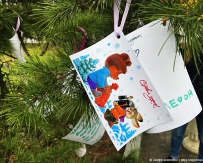 В Севастополе появилась ёлка новогодних поздравлений