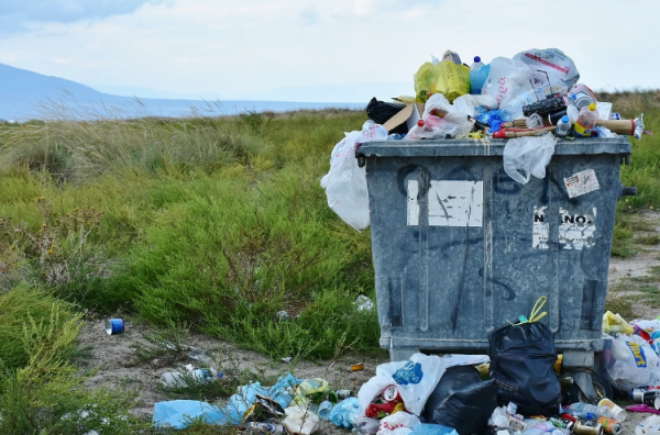 Как решить проблему с мусором в Крыму