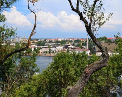 В марте в Севастополе начнет работу «Зеленый портал»