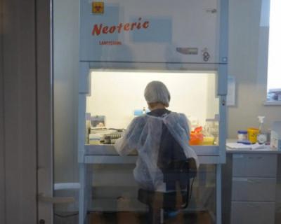 COVID-19 в Севастополе: 37 новых случаев заболевания и две смерти