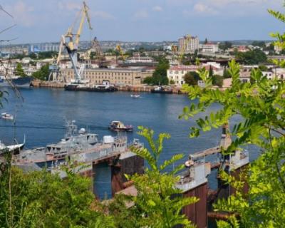 Правительство Севастополя поможет в продвижении продукции города на российский рынок