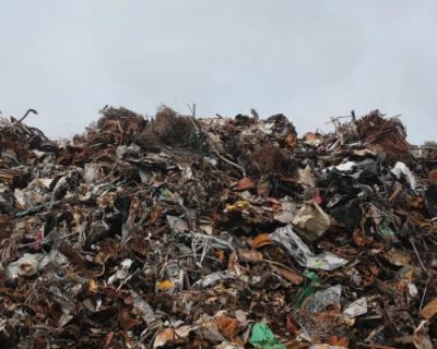 Несознательные граждане устроили свалку мусора в Парковом