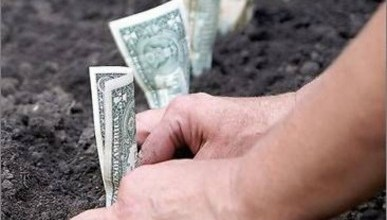Куда платить за аренду земли в Крыму?