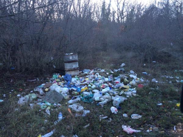 торопова дача мусор