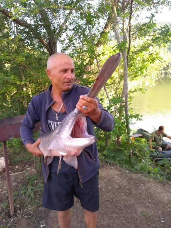 торопова дача рыбалка