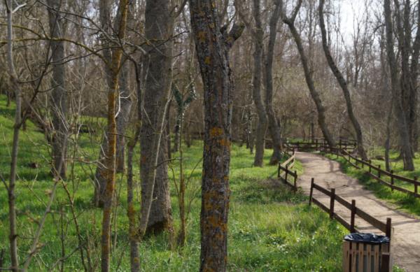 место для пеших прогулок Севастополь