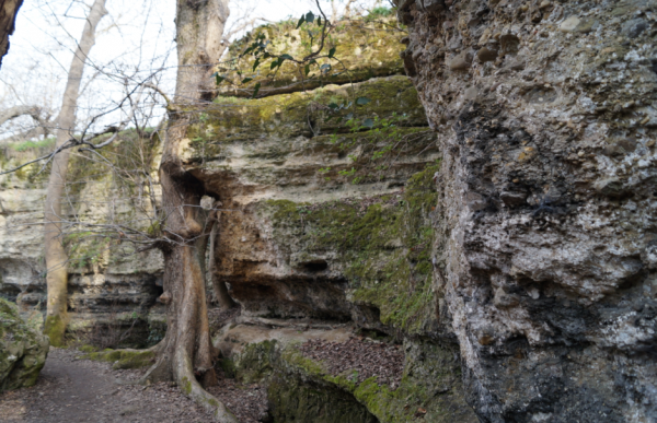 крымская природа скалы