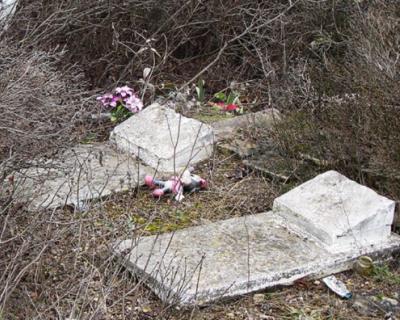 Михаил Развожаев инициировал уборку заброшенного кладбища