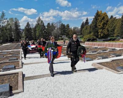 К 9 мая «Ночные волки» привезут ветеранам саженцы суворовского дуба