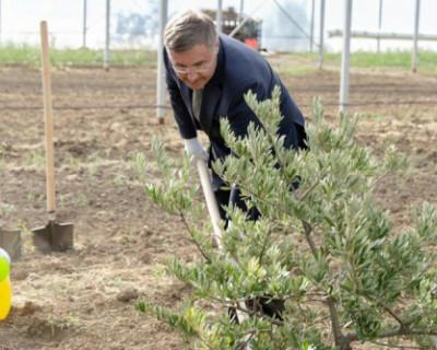 Глава Минобразования открыл в Крыму инновационную сельскохозяйственную долину
