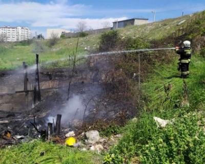 В Севастополе загорелась сухая трава