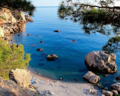 В Севприроднадзоре опровергли создание пляжной зоны в урочище Инжир