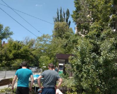 В Севастополе старый тополь упал на сидящего на лавочке мужчину (ВИДЕО, ФОТО)