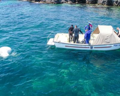 Спасатели Севастополя обнаружили 243 взрывоопасных предмета времён войны в акватории бухты