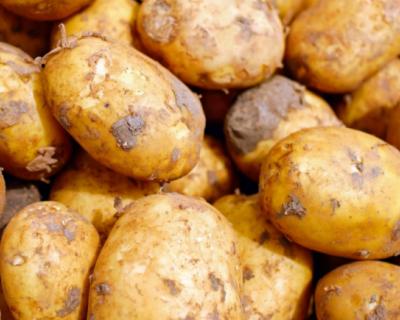В Симферополе украли крупную партию овощей