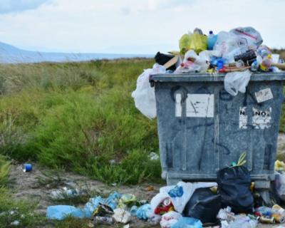 В Севастополе продолжается борьба за чистоту города