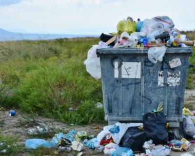 В Севастополе ужесточаются требования к уборке мусора