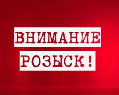 Полиция Севастополя ищет водителя, сбившего бабушку в селе Родное