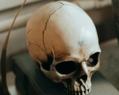 Погребения людей с вытянутыми черепами найдены в Крыму