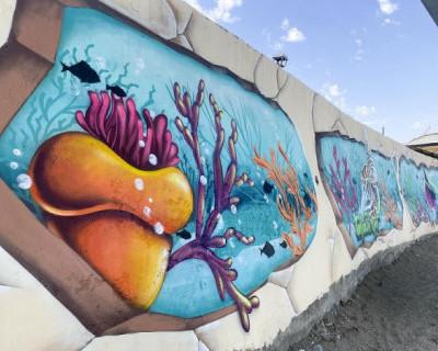 Крымский пляж превратился в уголок подводного мира