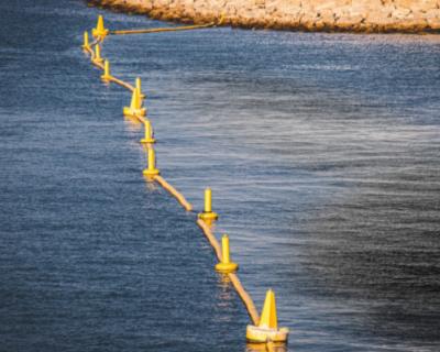 Экологическая катастрофа в акватории Новороссийска: нефть попала в Черное море