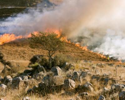 В воскресенье в Севастополе произошли четыре крупных пожара