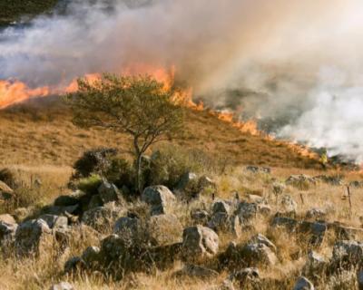 В районе улицы Горпищенко загорелась сухая трава