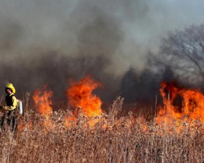 В Севастополе снова горит сухая трава