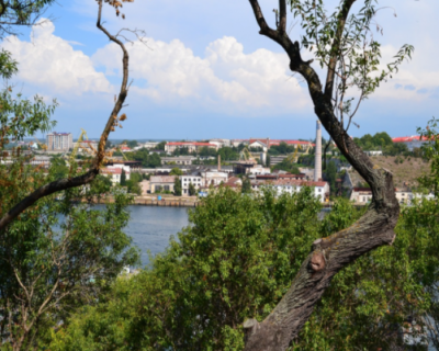 В Севастополе выделили 63,9 млн рублей на озеленение города